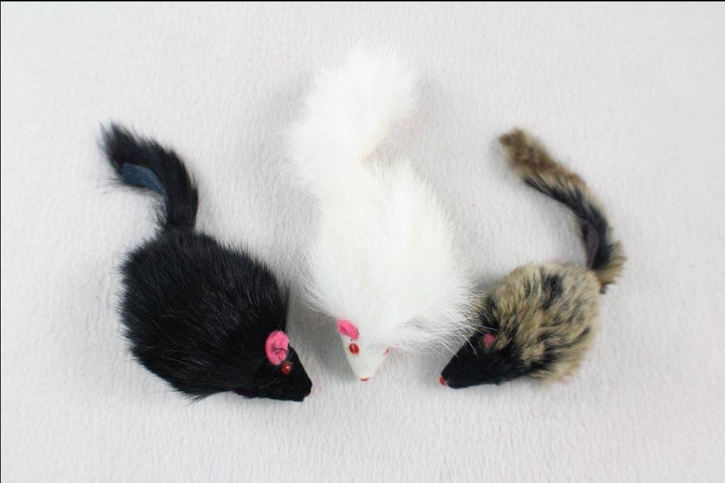 תוף 60 יח עכבר ארוך זנב