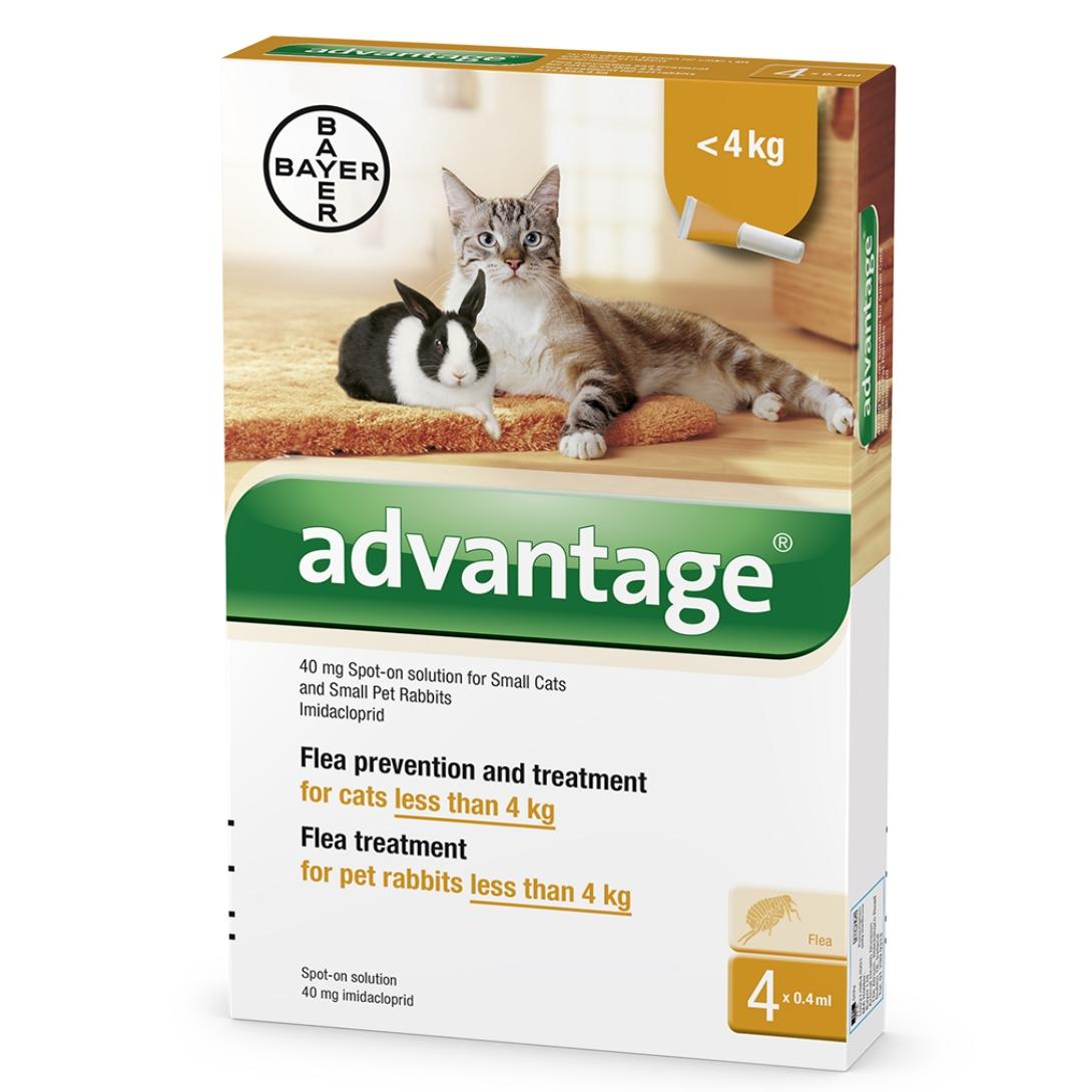 """אדוונטג' לחתולים במשקל עד 4 ק""""ג"""