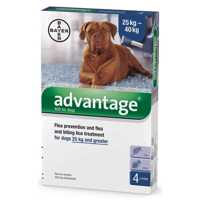 """אדוונטג' לכלבים במשקל מעל 25 ק""""ג"""