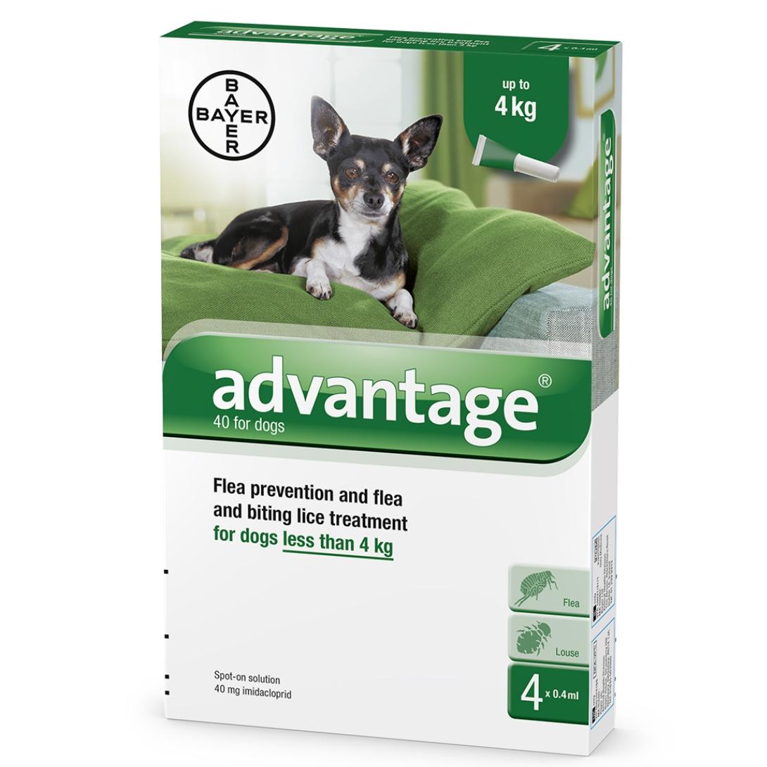 """אדוונטג' לכלבים במשקל עד 4 ק""""ג"""
