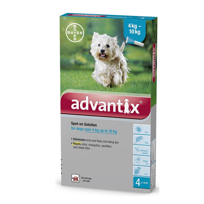 אדוונטיקס לכלבים במשקל 4-10 קג