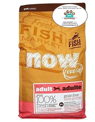 """NOW –  דגים ללא דגנים לכלבים בוגרים 11.34 ק""""ג"""