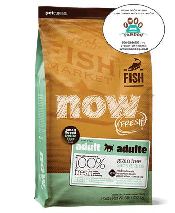 """NOW-  דגים ללא דגנים לכלבים בוגרים מגזעים קטנים 5.44 ק""""ג"""