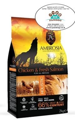 """אמברוסיה מזון לכלב בוגר עוף וסלמון 12 ק""""ג כתום אולטרה פרימיום"""